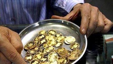 عکس از قیمت ارز، دلار، یورو، سکه و طلا در بازار امروز ۹۸/۰۷/۰۲